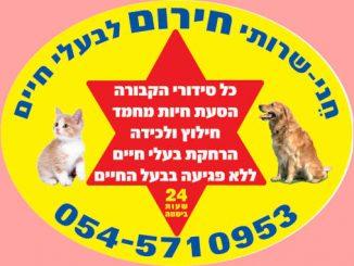 שירותי חירום לבעלי חיים, לכידת חתולים וכלבים, פינוי וקבורת חיות מחמד